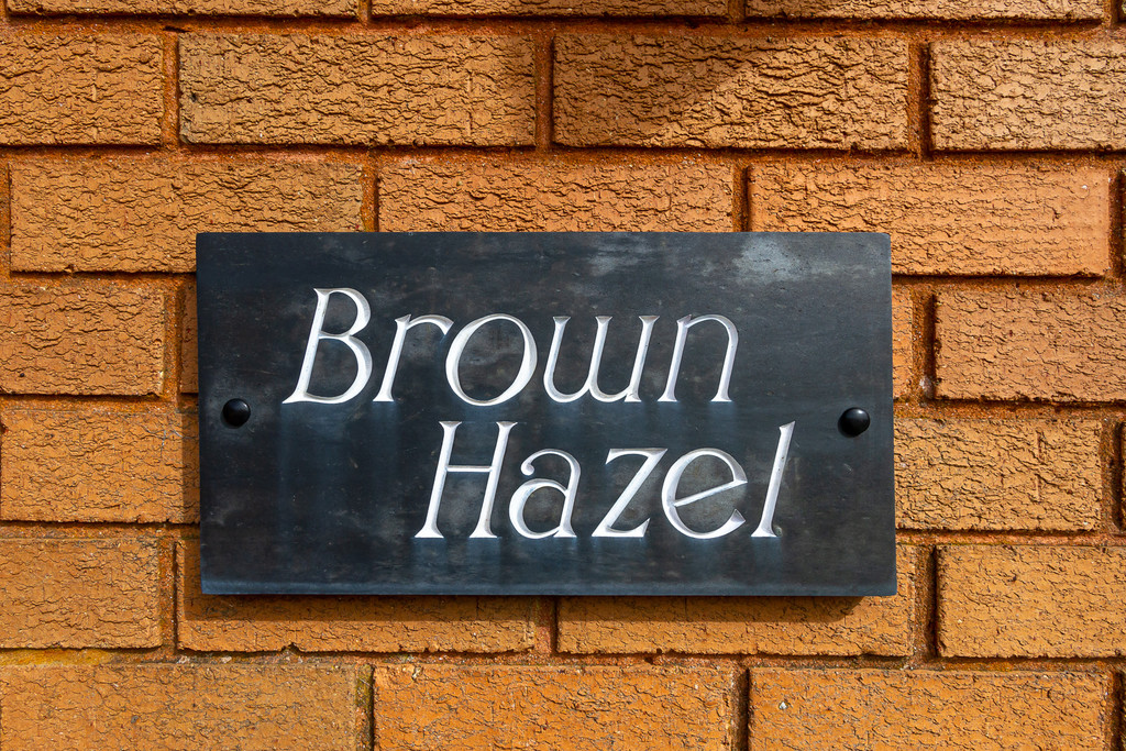 Image 1 Brown Hazel , Maerdy Lane, Lisvane, Cardiff